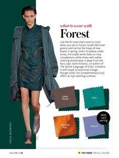 forest + dark taupe/teal/orange peel/violet