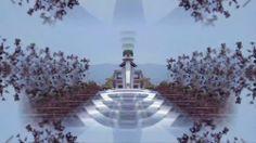 The Spirit Molecule - DMT MIX