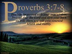 Proverbs 3-7-8