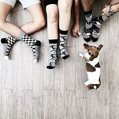 Megfigyeltük, hogy a kutya valahogy kihagyhatatlan szereplője a legjobb pinterest képeknek :) #cargomoda #happysocks #budapest #hungary #divat #fashion #shoes #socks #fashionlover #fashionaddict #fashionblogger #design #fun #photooftheday