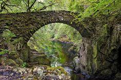 Bridge at the Hermitage Fine Art Print - Jim Dohms