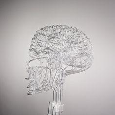 skeleton glass