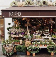 48 new ideas flowers shop cafe plants Cafe Plants, Garden Plants, Flower Market, Flower Shops, Shop Fronts, Garden Shop, Flower Farm, Store Displays, Planting Flowers