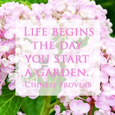 Life begins the day you start a garden
