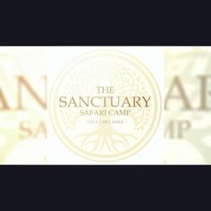 """The Sanctuary Yala on Instagram: """"A little snap shot into our world.... for the full video visit our website www.yalasanctuary.com bookings@yalasanctuary.com"""" Our World, Shots, Website, Instagram"""