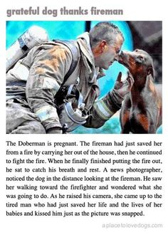 Grateful dog thanks fireman.