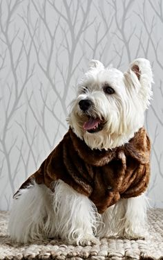 Treat your pooch to the finest in four-legged fashion this season with our Faux Fur Pet Jacket. The irresistible softness and warmth of real fur is expertly replicated to keep your beloved comfortable and in vogue.