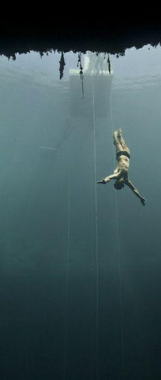 Free fall. US freediver Brian Pucella. http://win.gs/1fpkoT6 Image: © Daan Verhoeven #diving #freediving #deep