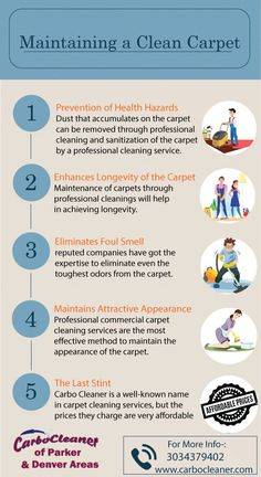 We at Carbo Cleaner are a professional carpet cleaning company in Parker, CO that offers residential and commercial carpet cleaning services to maintain your carpet clean. To get our reliable carpet cleaning services, visit our website now! #CarpetCleaningServices #CarpetCleaningParker Commercial Carpet Cleaning, Carpet Cleaning Company, Professional Cleaning Services, Professional Carpet Cleaning, Carpet Cleaners, How To Clean Carpet, Cleaning Hacks, Upholstery Cleaning, Website