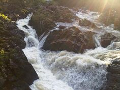 Falls of Feugh - Banchory