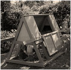 Here's a free step-by-step guide to building your own practical combination chicken coop and pasture pen, from the Australian Edition of Bet...