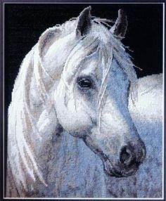 Gallery.ru / Foto # 4 - 1 caballo - muha-cc