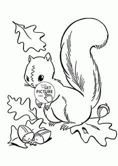 Fall Leaves and Cute Squirrel coloring pages for kids, autumn printables free - Wuppsy.com