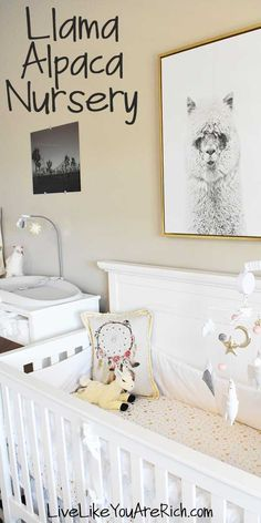 I love Llamas and Alpacas. They are just adorable. I have liked them even before the recent trend in decor. I am actually happy that they are on-trend right now as I was able to put this Baby Girl Llama Alpaca Nursery together very easily! Nursery Room, Nursery Themes, Nursery Decor, Room Decor, Boy Room, Nursery Ideas, Kids Room, Best Changing Table, Bumper Pads For Cribs