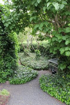 The garden of Ulla Molin, Sweden. Garden Living, Garden Cottage, Evergreen Garden, Garden Architecture, Garden Borders, Garden Gates, Shade Garden, Backyard Landscaping, Garden Inspiration