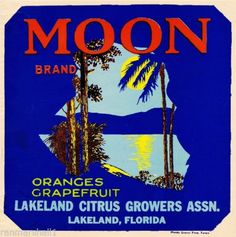 Moon :: Florida Southern College Fruit and Vegetable Crate Label Collection Orange Crate Labels, Vegetable Crates, Lakeland Florida, Florida Oranges, Fruit Box, Vintage Florida, Vintage Labels, Vintage Travel Posters, Vintage Advertisements