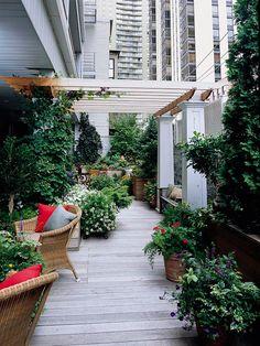 Dachgarten, Dachterrasse, Pflanzen, Gestalten,ideen, Sichtschutz ... Haus Prachtigen Dachgarten Grossstadt