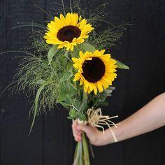Turussa paistaa aurinko! ☀  Kukkakimput loistaa kilpaa auringon kanssa ja tuo hyvää mieltä!  #kukkakimppu #kimppu #kesäkimppu #bouquet #kukkatervehdys #auringonkukka #heinät #flör#flör2017#florkukkajapuutarha#kukkajapuutarhaflör#kukka#puutarha#turku#love_turku#kissmyturku#flowerstagram#flowerinspo#kukkakauppa#natureinspires #natureinspired