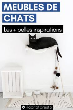 Dishes, Feeders & Fountains Cat Supplies Gamelle En Faience Pour Chien Ou Chat Neuve Beneficial To Essential Medulla