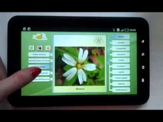 Biology - Plant Morphology - Android Apps on Google Play
