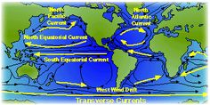 Transverse currents: flow from east to west and west to east, link the eastern & western boundary currents; caused by stress of wind on ocean in bands of trade winds at fringes of tropics & from mid-latitude westerlies; Equatorial currents: moderately shallow & broad; mid-latitudes: eastward-flowing currents are wider & flow more slowly - interrupted by continents & island arcs in N. hem