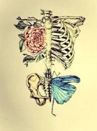Resultado de imagen de mariposas tumblr