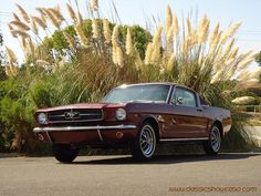 1965 Ford Mustang 2+2 Fastback by Classic Showcase