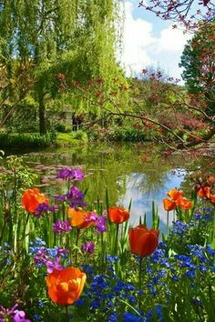 Monet's Garden, Giverny, France There is so much more. Monet painted his land as well as canvas Beautiful World, Beautiful Gardens, Beautiful Flowers, Beautiful Places, Giverny France, Paris Pictures, Paris Photos, Sunset Pictures, Parcs