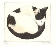 Original Cat Etching 'Lu Lu' by Kay McDonagh by Kay McDonagh.  SOLD.  More on request.