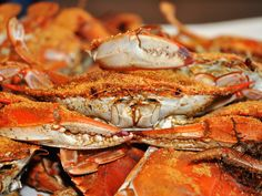 6a8e0c968 MARYLAND  Spend an afternoon indulging in a pile of fresh steamed Maryland blue  crabs