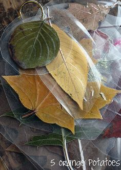 Make leaf rubbing plates for ceramics with a laminater!
