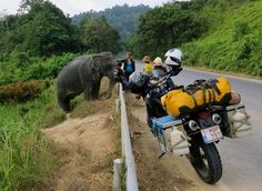 Photo by Maximilian Volders, of Marianne De Leeuw, Belgium; meet and greet with an elephant in South Thailand, on our 3 year honeymoon trip,...
