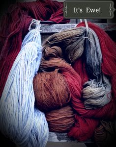 It's Ewe! Delicious natural dyes-indigo,tuart bark,cochineal,madder