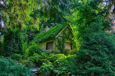 Trendy House In The Woods Forests Fairy Tales # fairy # . - Trendy House In The Woods Forests Fairy Tales # fairy forêts - Cottage In The Woods, Cozy Cottage, Cottage Homes, House In The Woods, Cottage Style, Garden Cottage, Witch Cottage, Fairytale Cottage, Storybook Cottage