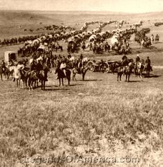 George Custer Expedition