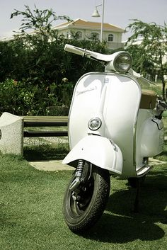 Vespa Mini 50s. for my vision board. and in front of my house for my birthday.