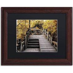 Trademark Fine Art Crossing Fall Canvas Art by Philippe Hugonnard, Black Matte, Wood Frame, Assorted