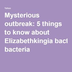 Mysterious outbreak: 5 things to know about Elizabethkingia bacteria
