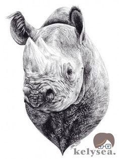 Rhino sketch by kelysea