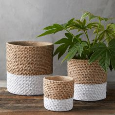Durable cement gets a natural finish with this pot that's made to look like a woven basket dipped in white paint. - Cement - Indoor use only - Drainage hole not included - Imported Small: diameter Medium: diameter Large: diameterCheck out Colorblock Woven Rope Crafts, Diy Home Crafts, Diy Crafts To Sell, House Plants Decor, Plant Decor, Cement Pots, Paint Cement, Decoration Plante, Basket Decoration