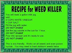 Organic Gardening - weed killer recipe