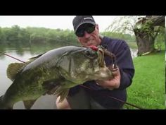 Fishing a Swim Jig From Shore for Super Sized Largemouth - Dave Mercer's Facts of Fishing THE SHOW - YouTube