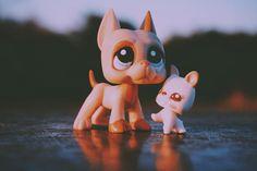 """""""••• Love me like you do. // #lps #littlestpetshop"""""""