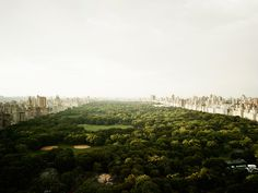 Central Park, New York City   #liveminiml