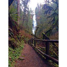 Munson Creek Waterfall | Tillamook, Oregon