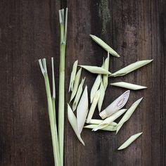 Subtle, citrusy and fresh — that's lemongrass