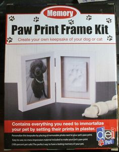 Pet Paw Print And Frame Kit Keepsake Plaster Impression ~ Free Shipping