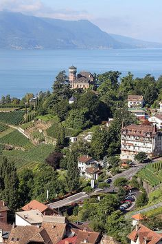 view from Chateau du Chatelard ,Switzerland