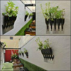 Herbs planter from Wine Bottle #Bottle, #DIY, #Planter, #Wine