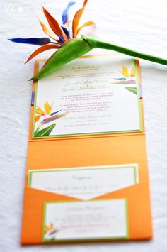 DK Designs, Bird of Paradise Inspired Invitations, tropical theme Exotic Wedding, Our Wedding, Destination Wedding, Wedding Planning, Wedding Ideas, Wedding Themes, Wedding Decor, Creative Wedding Invitations, Beach Wedding Invitations